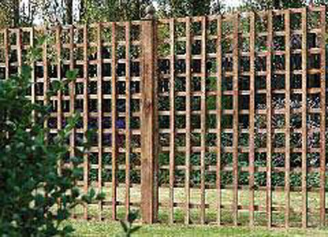 heavy duty square trellis 10 ft wide jarrett fencing