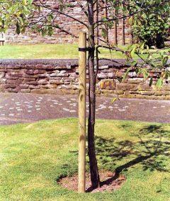 Timber Tree Pole